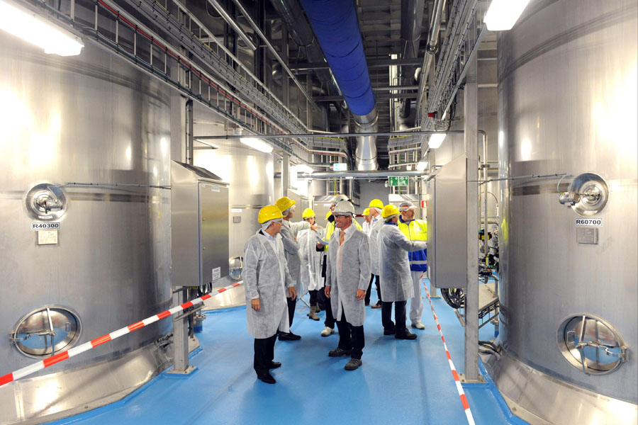 Food product factory VMF